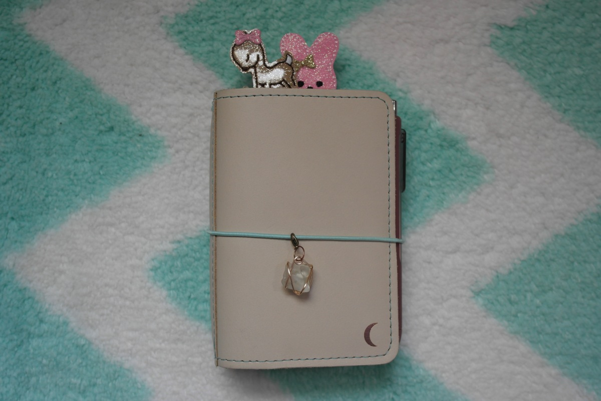 Organizing My Life: Foxy Fix Traveler's Notebook
