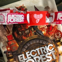 Electric Forest Packing List